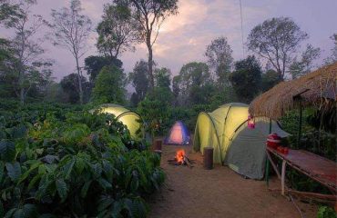 coorg_tent_stay_2